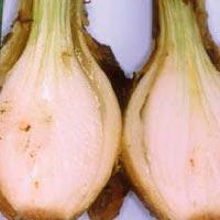 vaginalniy-bakterioz-i-muzhchini